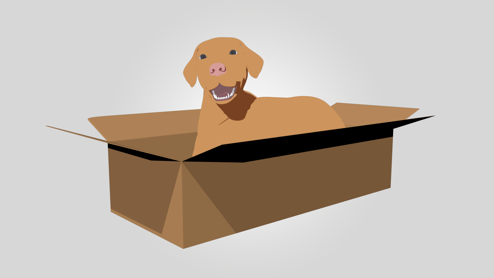A dog inside a box
